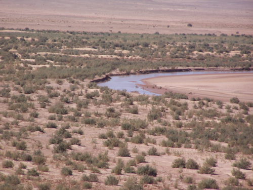désert.png